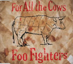 Foo Fighters: For All The Cows - Cover