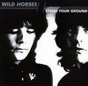 Wild Horses: Stand Your Ground - Cover