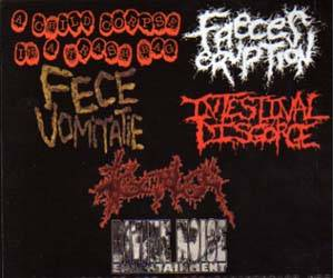 Intestinal Disgorge: Most Devastating Bands On The Planet, The - Cover
