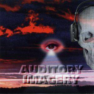 Auditory Imagery: Reign - Cover