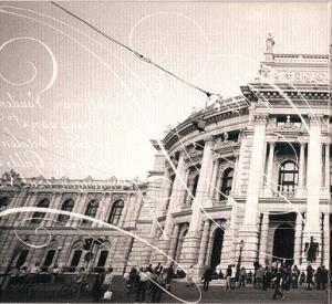 Die Toten Hosen: Nur Zu Besuch: Unplugged Im Wiener Burgtheater (CD) - Bild 2