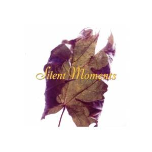 Cover - Jolly Kunjapuu: Silent Moments
