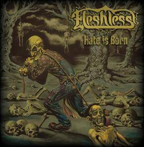 Cover - Fleshless: Hate Is Born