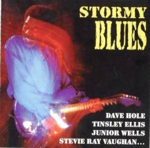 Stormy Blues - Cover