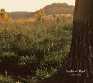 Andrew Bird: Noble Beast - Cover