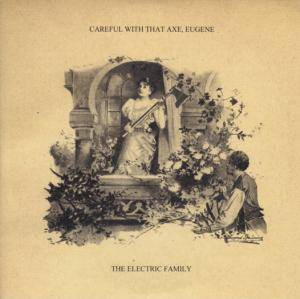 Cover - Electric Family, The: Careful With That Axe, Eugene
