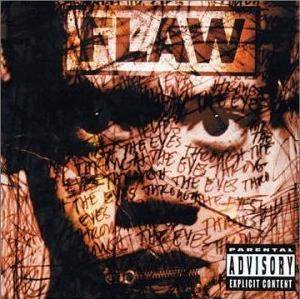 Cover - Flaw: Through The Eyes
