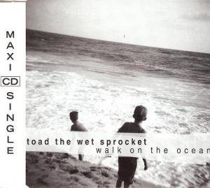 Cover - Toad The Wet Sprocket: Walk On The Ocean
