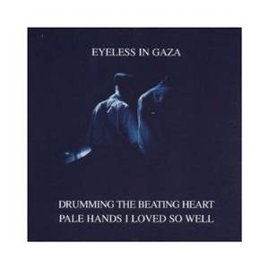 Cover - Eyeless In Gaza: Drumming The Beating Heart