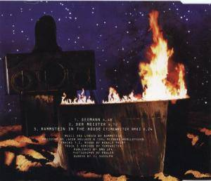Rammstein: Seemann (Single-CD) - Bild 2