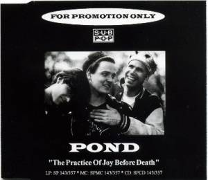 Pond: Practice Of Joy Before Death, The - Cover