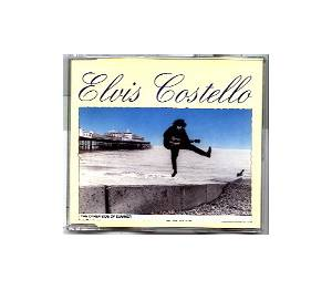 Elvis Costello: Other Side Of Summer, The - Cover