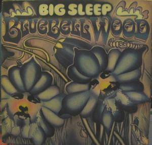 Big Sleep: Bluebell Wood - Cover