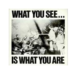 Cover - Alternative TV: What You See ... Is What You Are