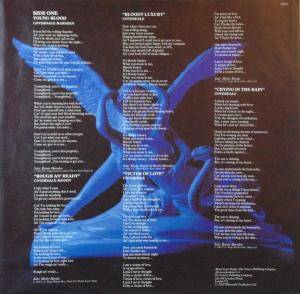 Whitesnake: Saints & Sinners (LP) - Bild 3