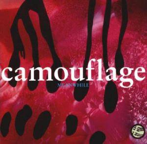 Camouflage: Meanwhile - Cover