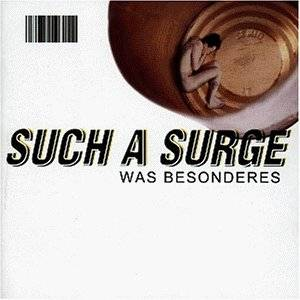 Such A Surge: Was Besonderes - Cover