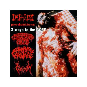 Disgorged Foetus: 3 Way To The Gore - Cover