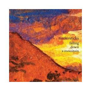 Cover - Tindersticks: Falling Down A Mountain