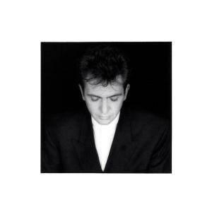 Peter Gabriel: Shaking The Tree - Sixteen Golden Greats (CD) - Bild 1