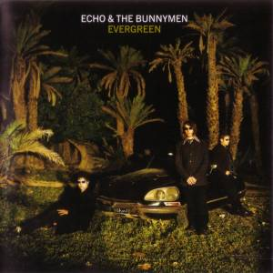 Cover - Echo & The Bunnymen: Evergreen