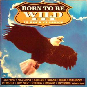 Born To Be Wild III - Cover