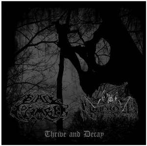 Cover - Thou: Thrive And Decay