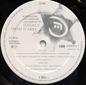 Terence Trent D'Arby: Introducing The Hardline According To Terence Trent D'Arby (LP) - Bild 5