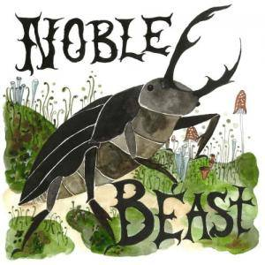 Cover - Andrew Bird: Noble Beast / Useless Creatures