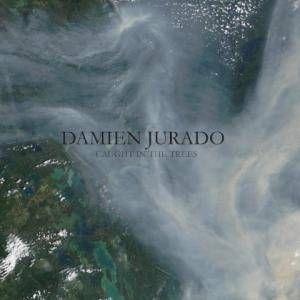 Cover - Damien Jurado: Caught In The Trees