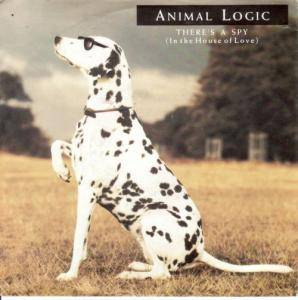 Animal Logic: There's A Spy (In The House Of Love) - Cover