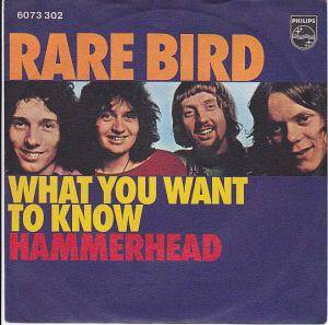 Cover - Rare Bird: What You Want To Know