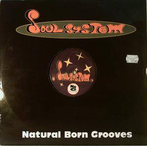 Cover - Natural Born Grooves: Soulsystem