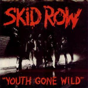 Skid Row: Youth Gone Wild - Cover