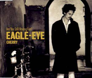 Cover - Eagle-Eye Cherry: Are You Still Having Fun?