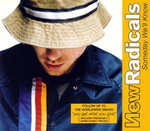 Cover - New Radicals: Someday We'll Know