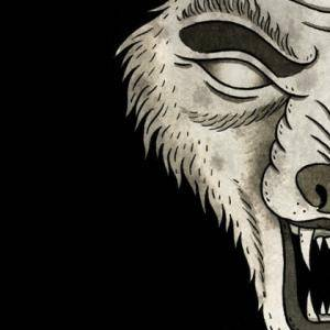 Cover - Haste The Day: Attack Of The Wolf King