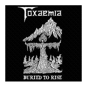 Toxaemia: Buried To Rise - Cover
