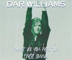 Cover - Dar Williams: What Do You Hear In These Sounds