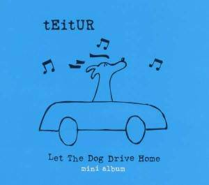 Teitur: Let The Dog Drive Home - Cover