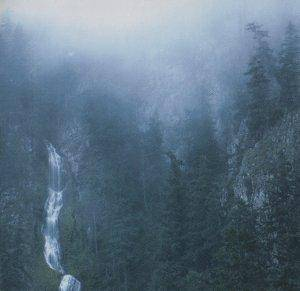 Wolves In The Throne Room: Diadem Of 12 Stars (CD) - Bild 1