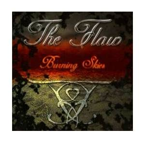 The Flaw: Burning Skies - Cover