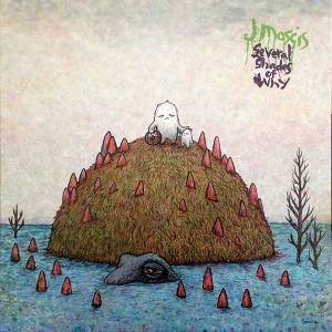 J Mascis: Several Shades Of Why - Cover