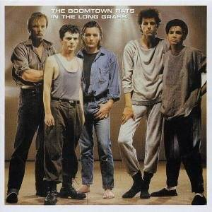 Cover - Boomtown Rats, The: In The Long Grass