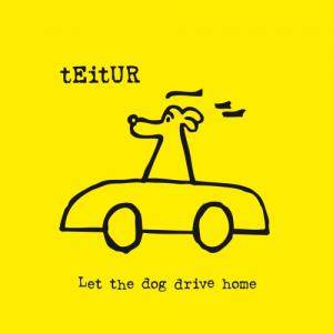 Cover - Teitur: Let The Dog Drive Home