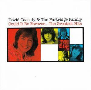 Cover - David Cassidy: Could It Be Forever...The Greatest Hits