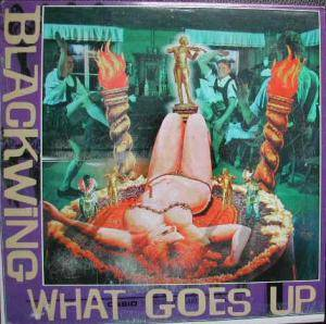 Cover - Blackwing: What Goes Up