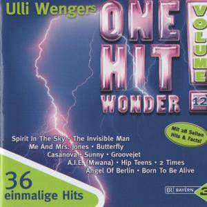 Ulli Wengers One Hit Wonder Vol. 12 - Cover
