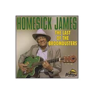 Cover - Homesick James: Last Of The Broomdusters, The