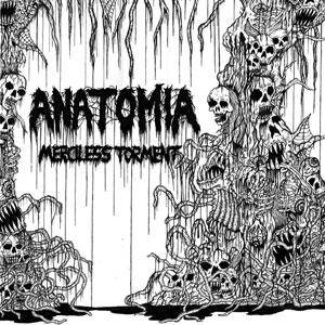 Cover - Anatomia: Merciless Torment / Over There Guts Everywhere